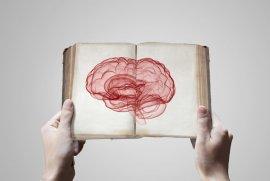Bu yazıyıokurken hiç düşünmeden otomatik olarak okuma aktivitesini gerçekleştiririz.